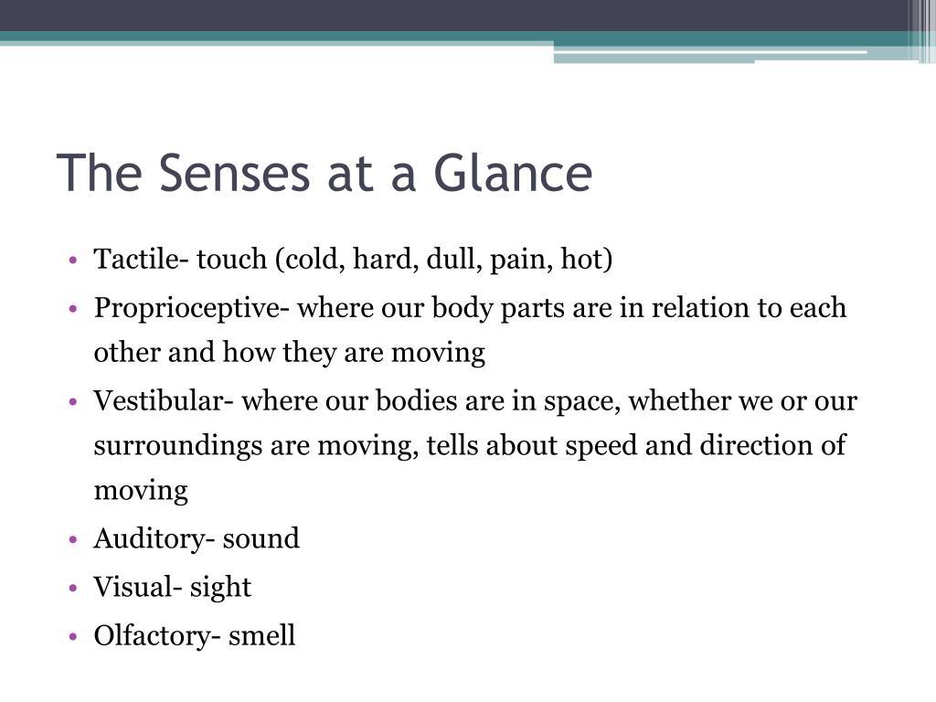 The Senses at a Glance