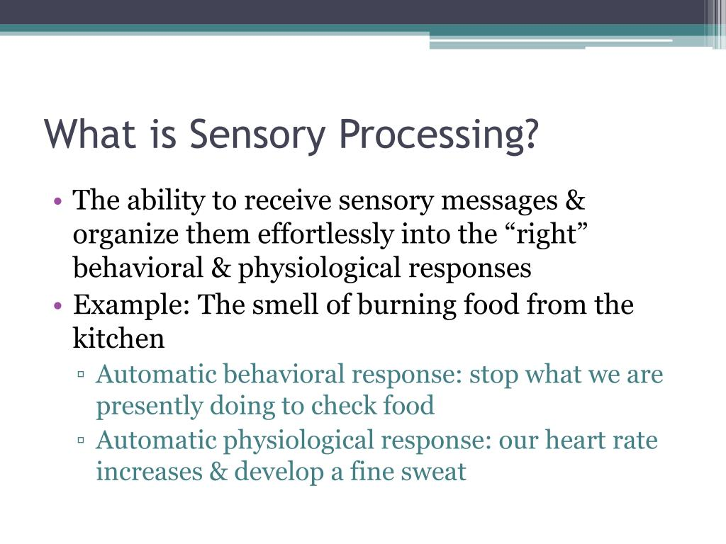 What is Sensory Processing?