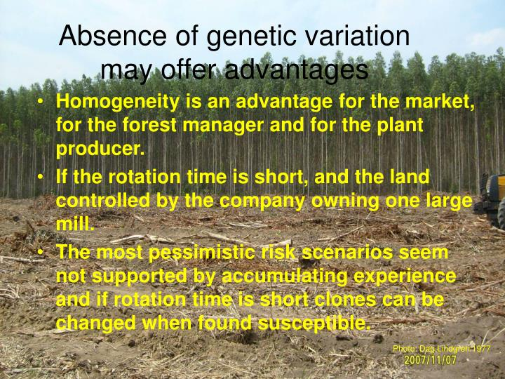 Absence of genetic variation may offer advantages