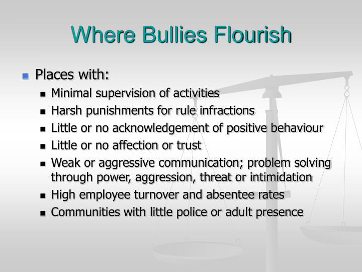 Where Bullies Flourish