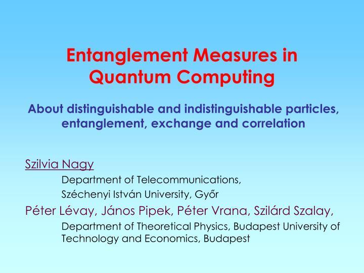 Entanglement Measures in Quantum Computing