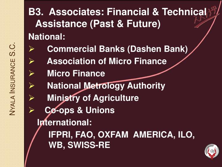 B3.  Associates: Financial & Technical Assistance (Past & Future)