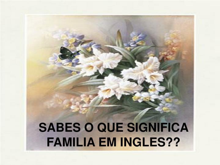 sabes o que significa familia em ingles