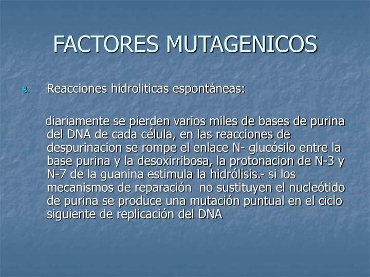 FACTORES MUTAGENICOS