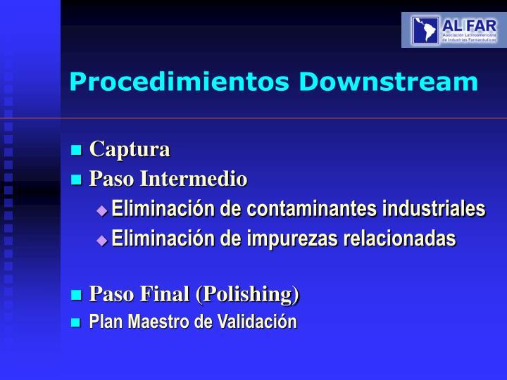 Procedimientos Downstream