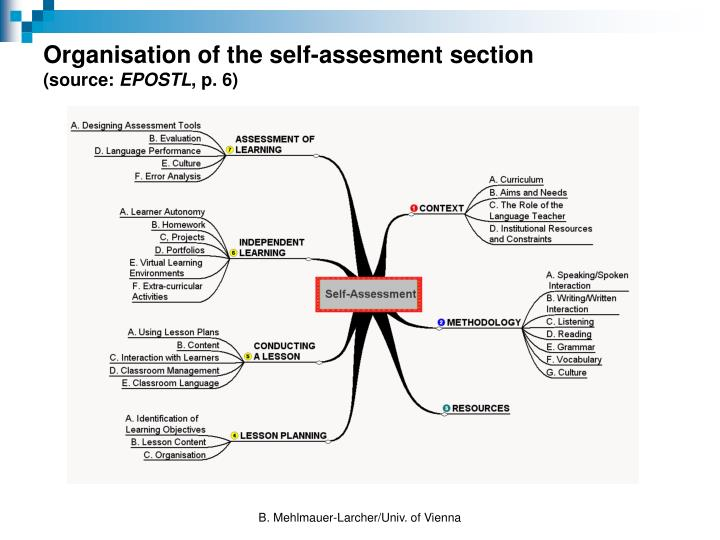 Organisation of the self-assesment section