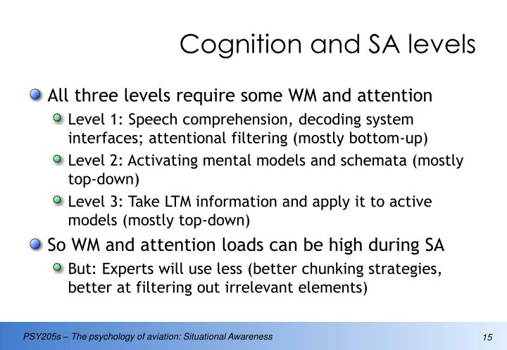 Cognition and SA levels