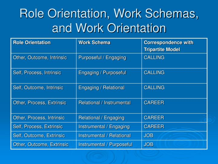 Role Orientation, Work Schemas, and Work Orientation
