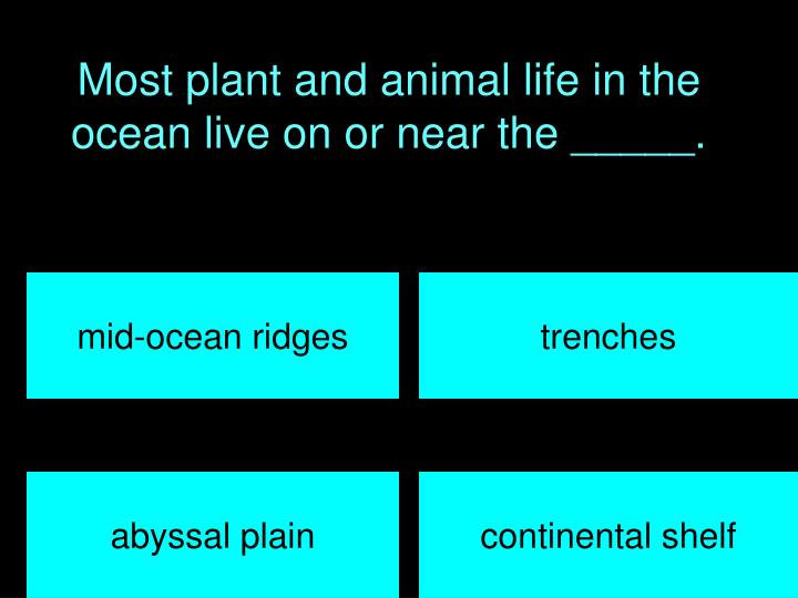 Most plant and animal life in the ocean live on or near the _____.