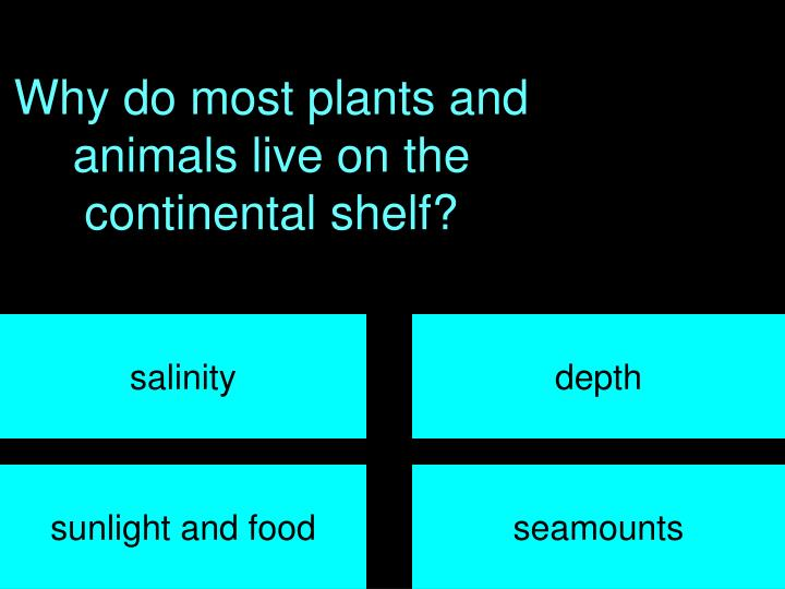 Why do most plants and animals live on the continental shelf?