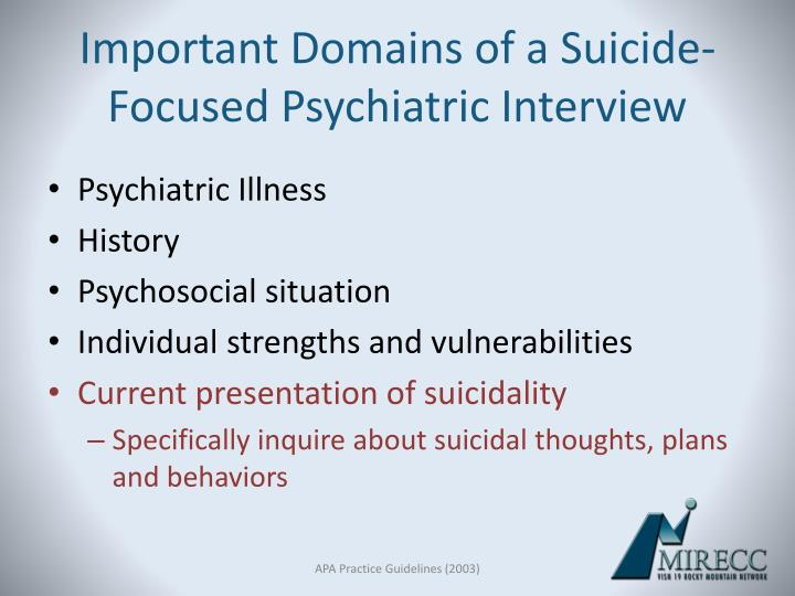 Important Domains of a Suicide- Focused Psychiatric Interview