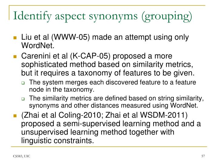 Identify aspect synonyms (grouping)