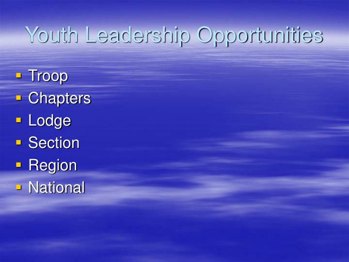 Youth Leadership Opportunities