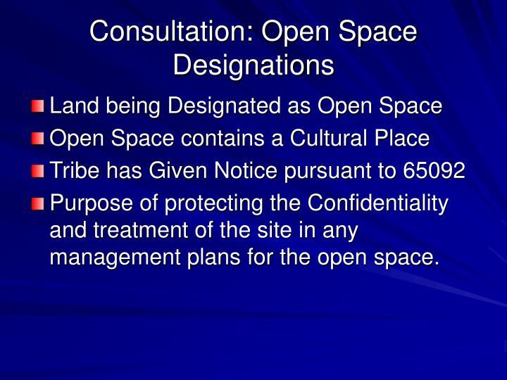 Consultation: Open Space Designations