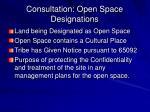 consultation open space designations