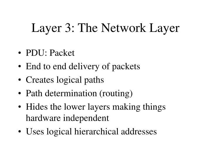 Layer 3: The Network Layer