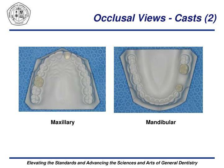 Occlusal Views - Casts (2)