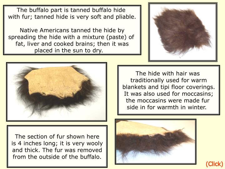 The buffalo part is tanned buffalo hide