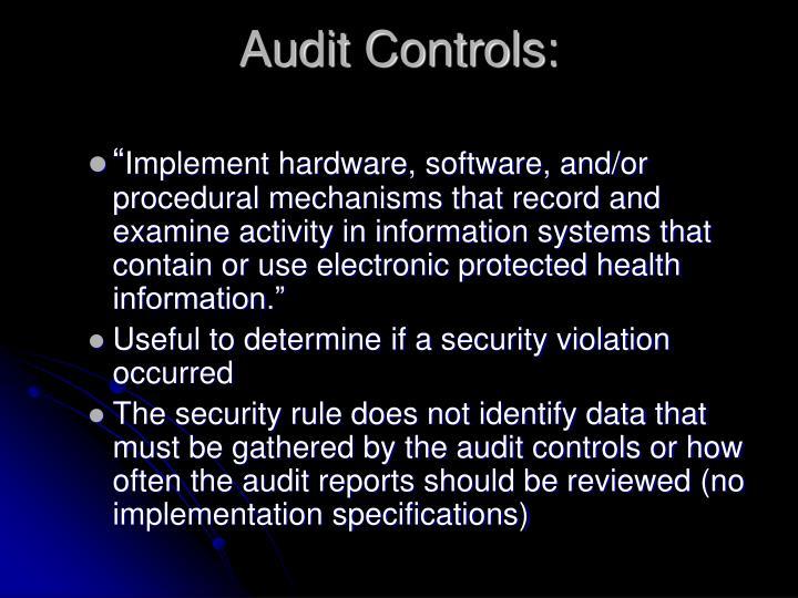 Audit Controls: