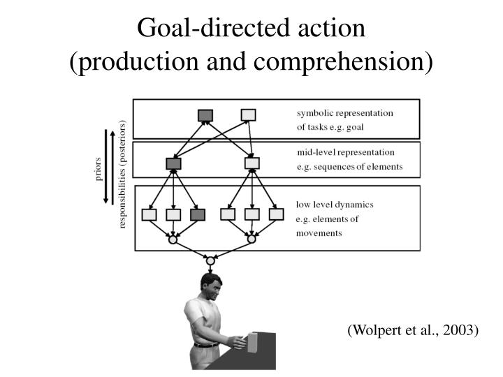 Goal-directed action             (production and comprehension)