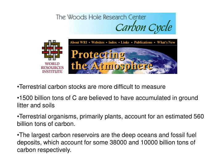 Terrestrial carbon stocks are more difficult to measure