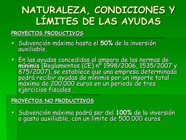 NATURALEZA, CONDICIONES Y LÍMITES DE LAS AYUDAS