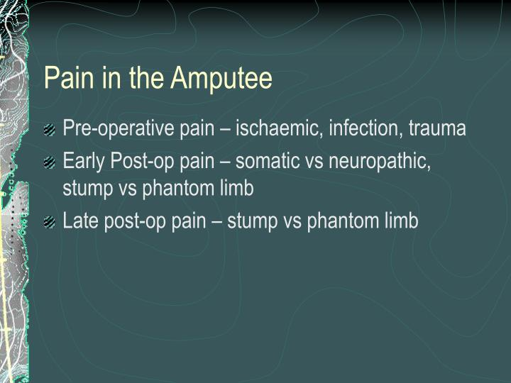 Pain in the Amputee