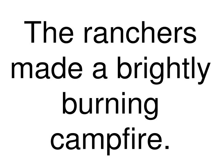 The ranchers made a brightly burning campfire.