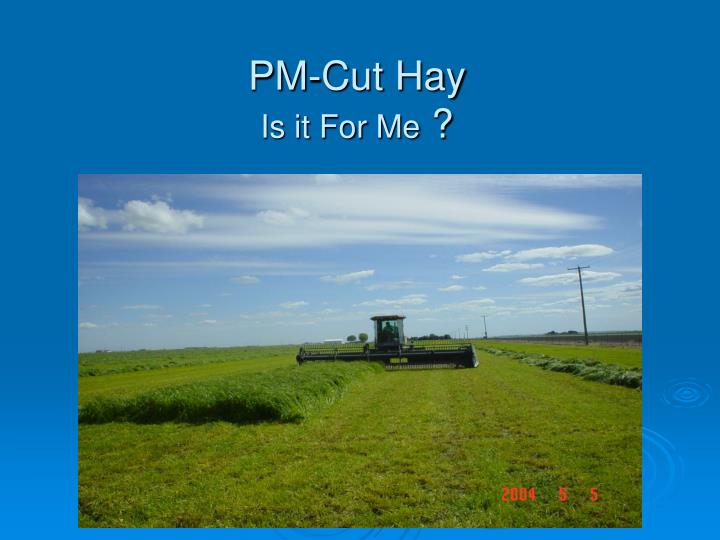Pm cut hay is it for me