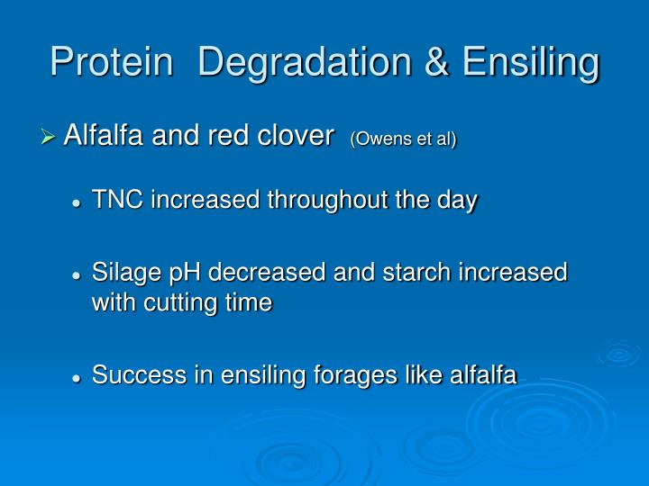 Protein  Degradation & Ensiling