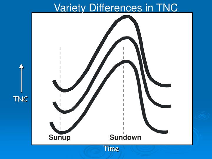 Variety Differences in TNC