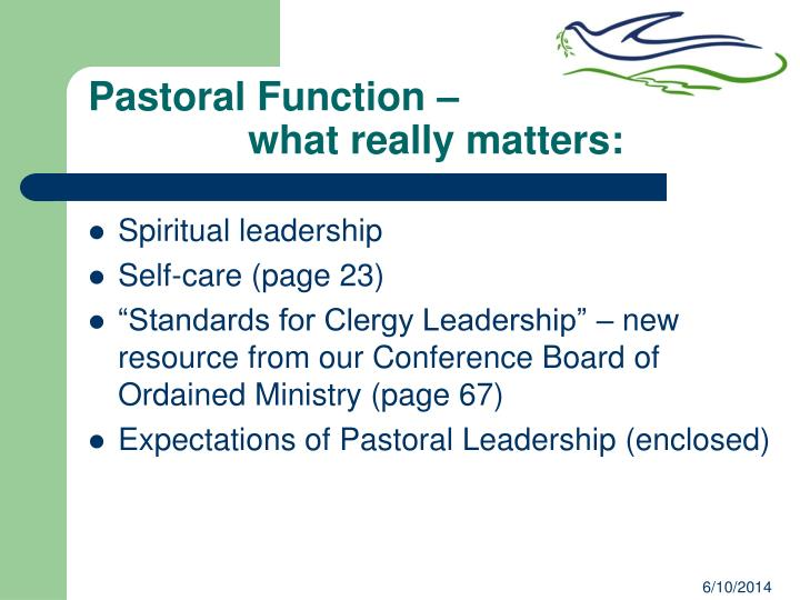 Pastoral Function –
