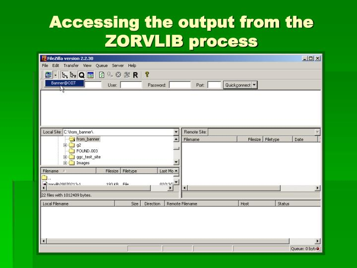 Accessing the output from the ZORVLIB process