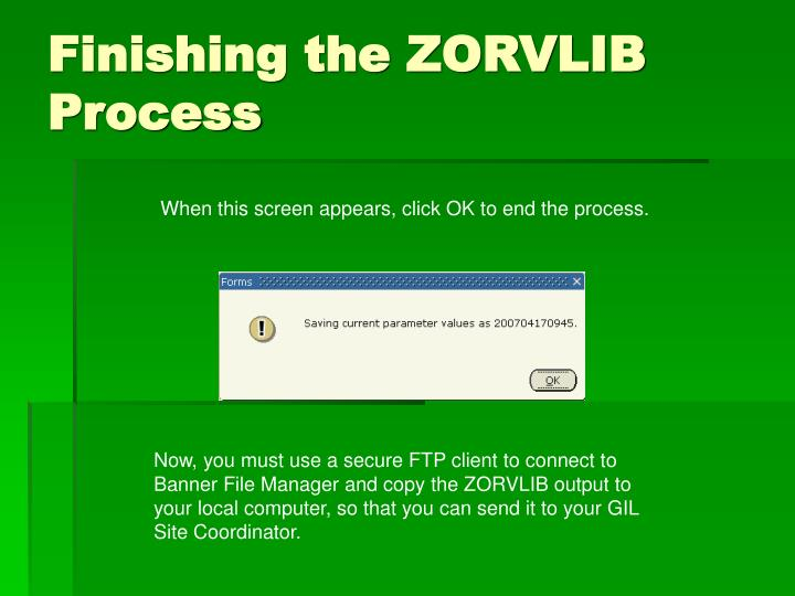 Finishing the ZORVLIB Process