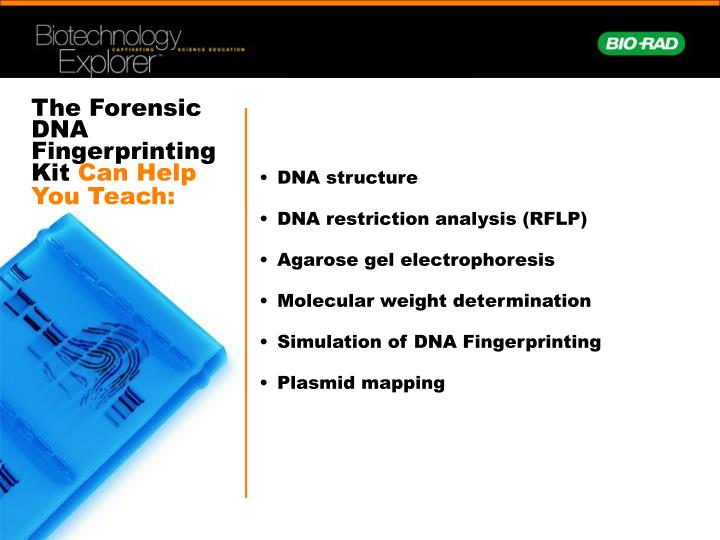The Forensic