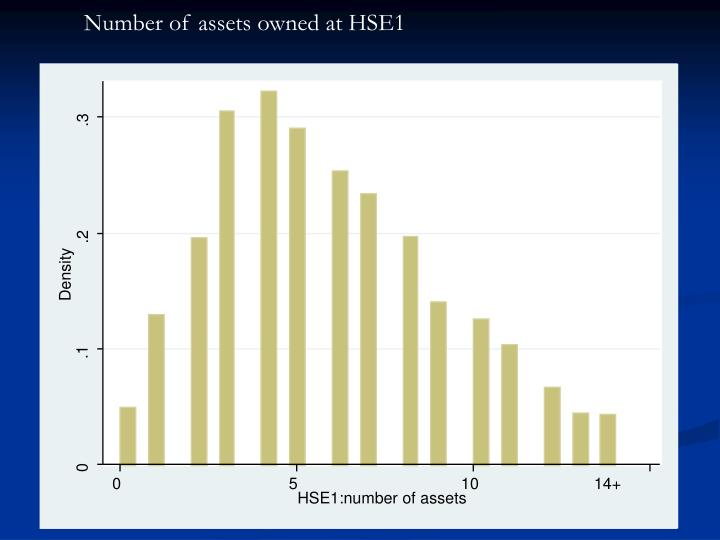 Number of assets owned at HSE1