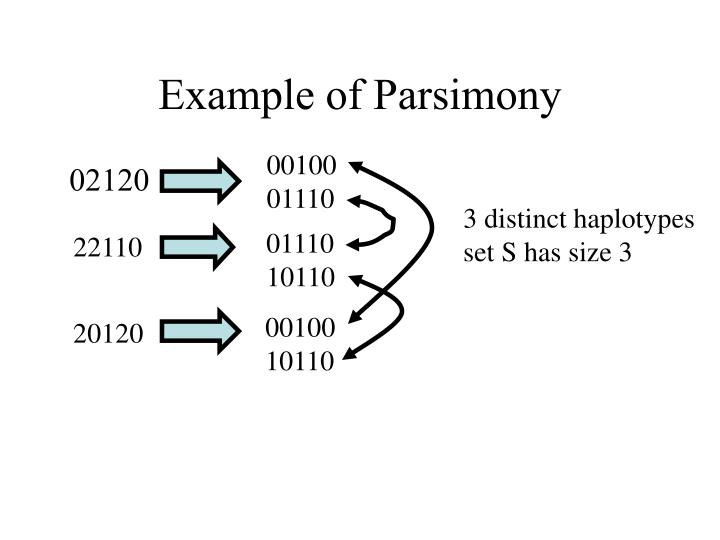 Example of Parsimony