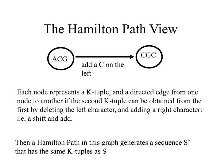 The Hamilton Path View