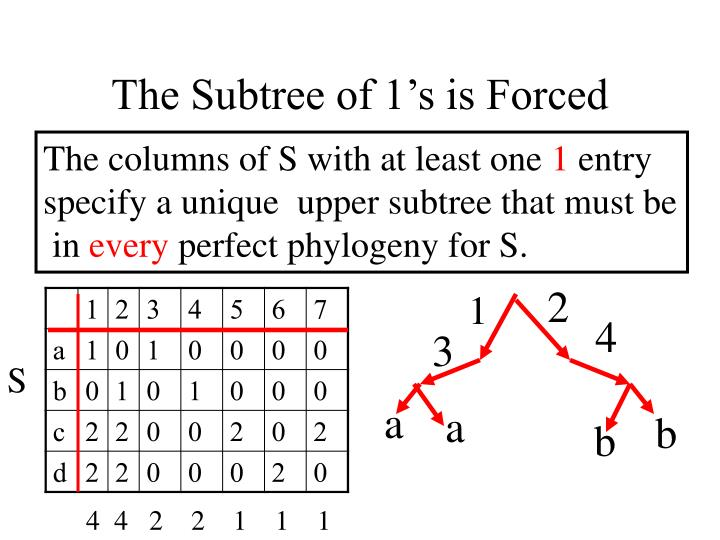 The Subtree of 1's is Forced