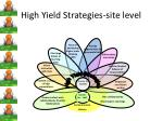 high yield strategies site level