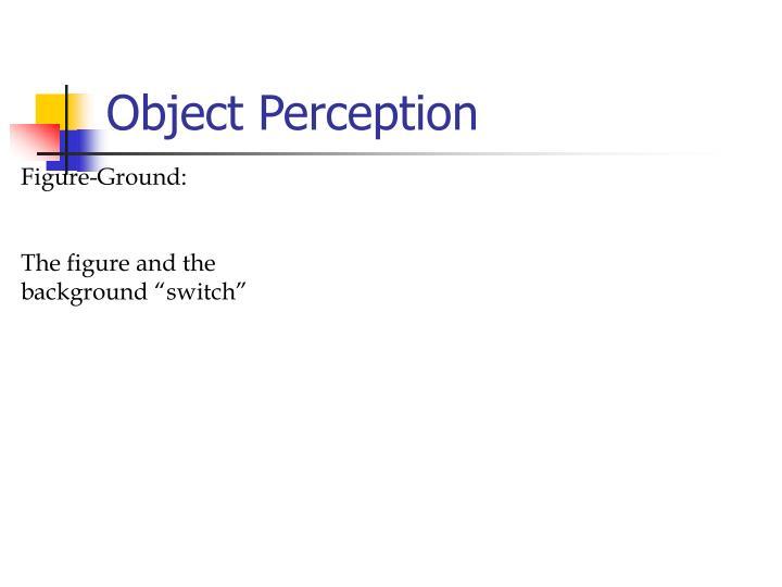 Object Perception