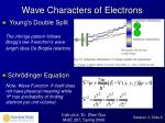 wave characters of electrons