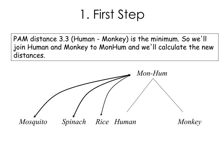 1. First Step