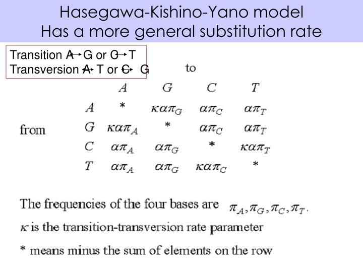 Hasegawa-Kishino-Yano model