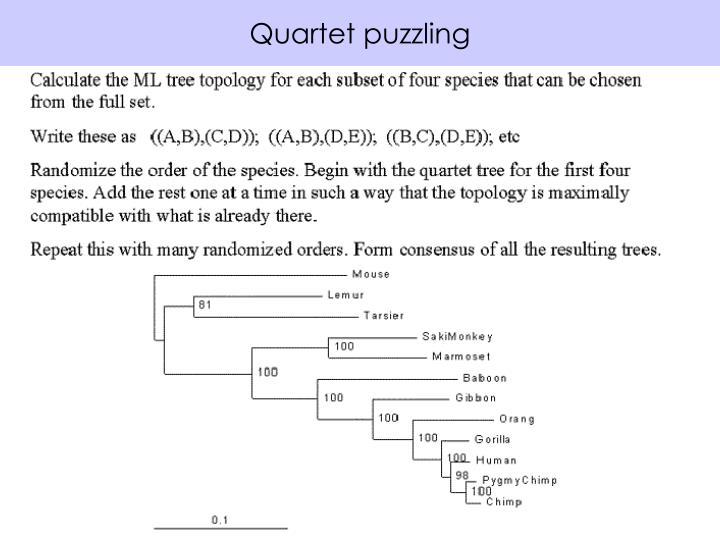 Quartet puzzling