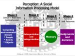 perception a social information processing model