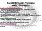 social information processing model of perception