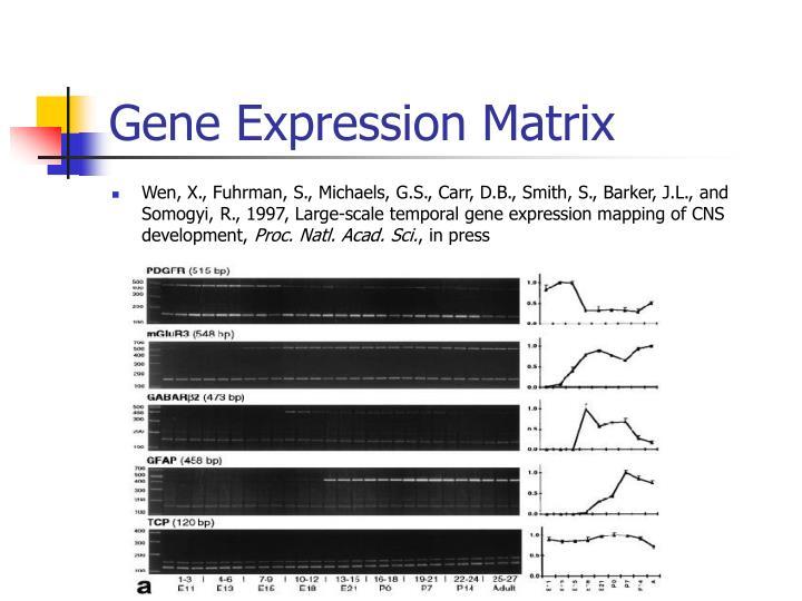 Gene Expression Matrix