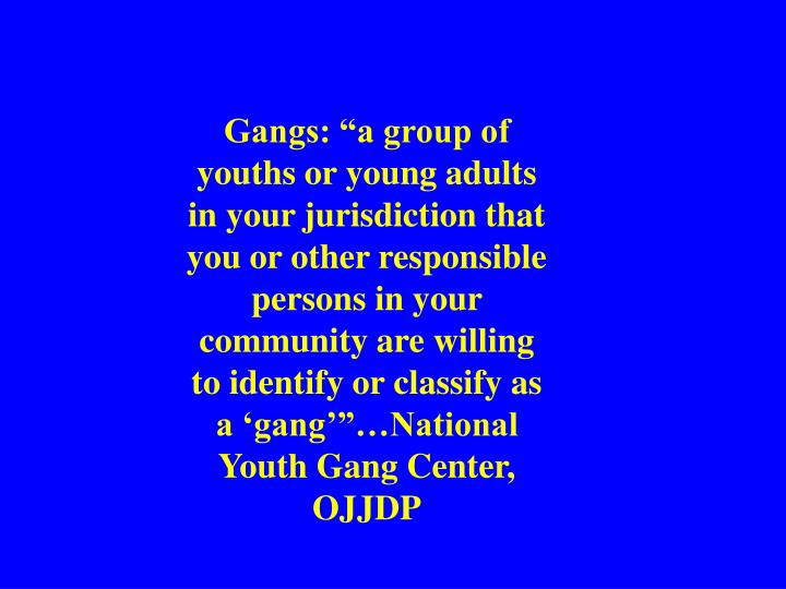 """Gangs: """"a group of youths or young adults in your jurisdiction that you or other responsible persons in your community are willing to identify or classify as a 'gang'""""…National Youth Gang Center, OJJDP"""