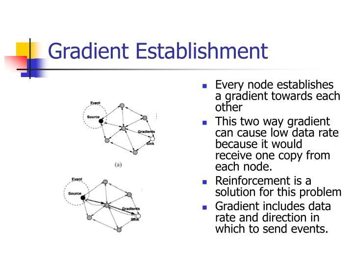 Gradient Establishment